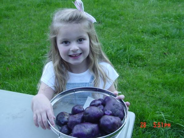Delaney with purple potatoes - Seattle 2006