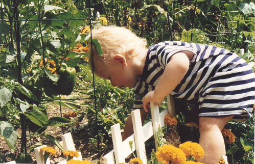 More of Grayson gardening at 1 yo